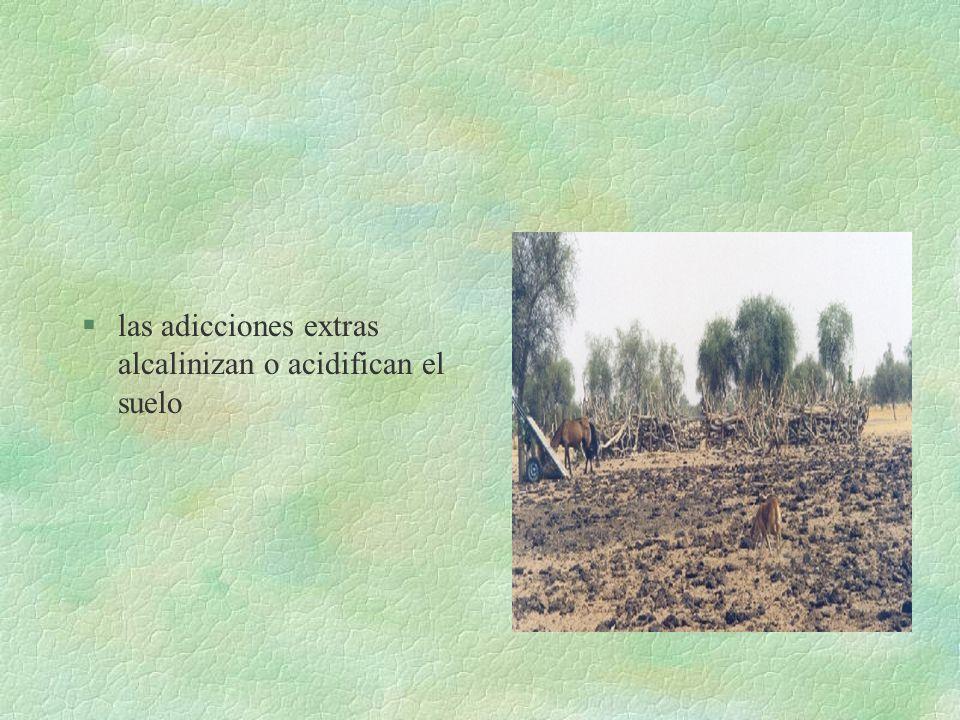 EN EL SUELO... §El uso como fertilizante provoca productos y subproductos en exceso §la adicion artificial como urea, NH 4 + y NO 3 - reacciona igual