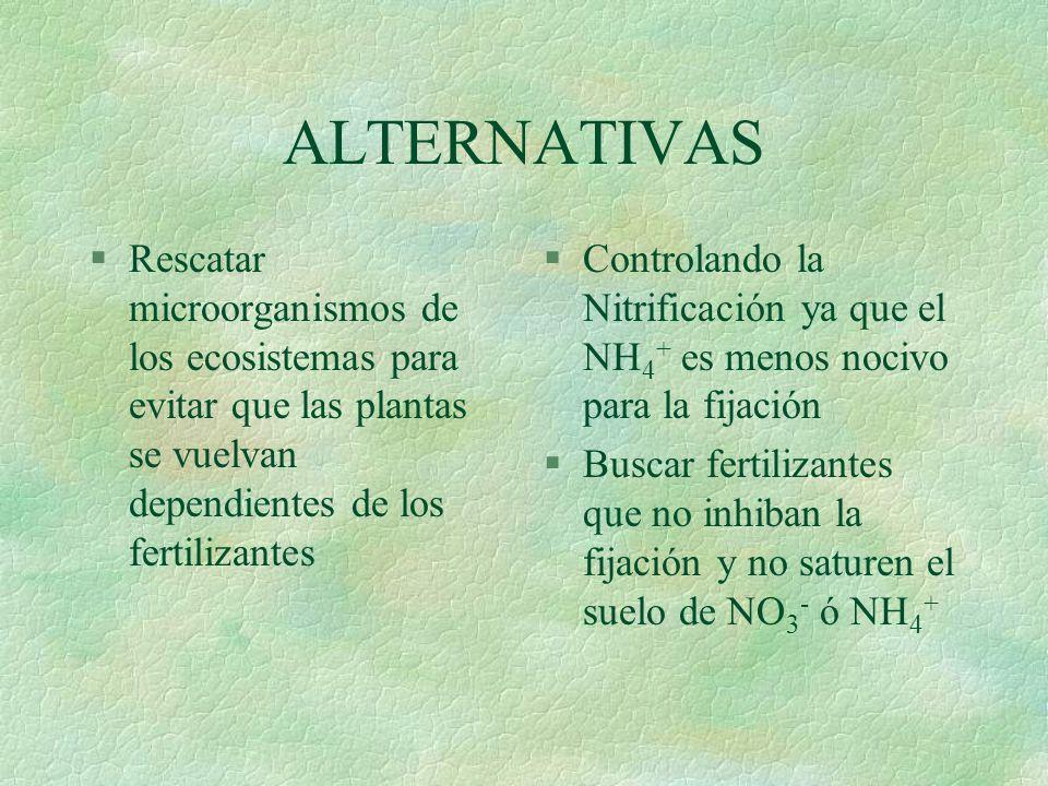 §las adicciones extras alcalinizan o acidifican el suelo