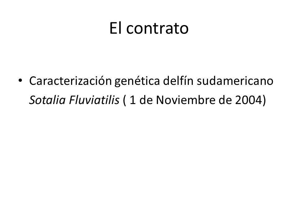 El contrato Caracterización genética delfín sudamericano Sotalia Fluviatilis ( 1 de Noviembre de 2004)