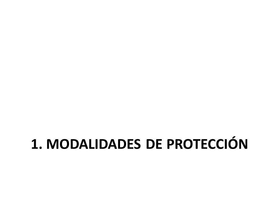 1. MODALIDADES DE PROTECCIÓN