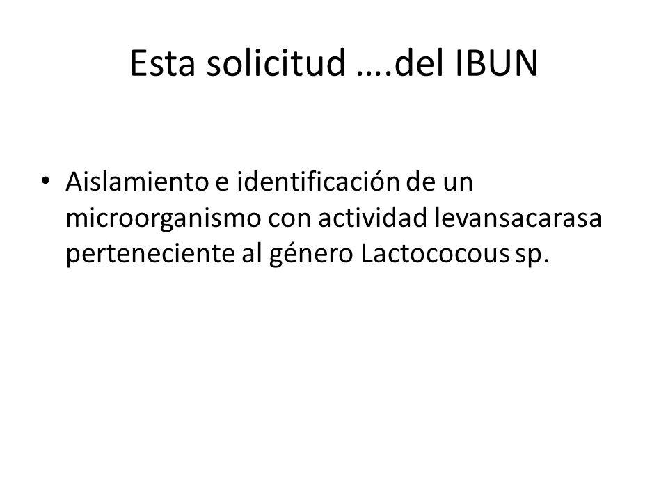 Esta solicitud ….del IBUN Aislamiento e identificación de un microorganismo con actividad levansacarasa perteneciente al género Lactococous sp.