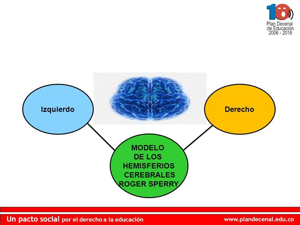www.plandecenal.edu.co Un pacto social por el derecho a la educación IzquierdoDerecho MODELO DE LOS HEMISFERIOS CEREBRALES ROGER SPERRY
