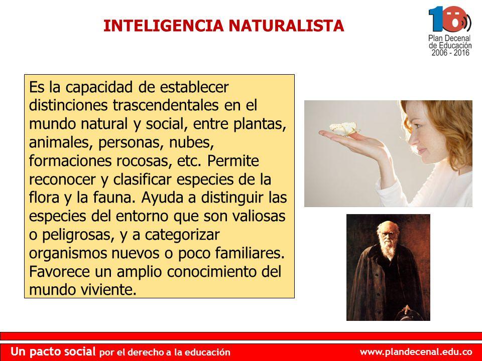 www.plandecenal.edu.co Un pacto social por el derecho a la educación INTELIGENCIA NATURALISTA Es la capacidad de establecer distinciones trascendental