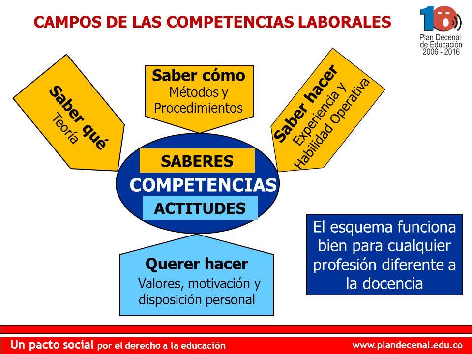www.plandecenal.edu.co Un pacto social por el derecho a la educación CAMPOS DE LAS COMPETENCIAS LABORALES Saber qué Teoría Saber cómo Métodos y Proced
