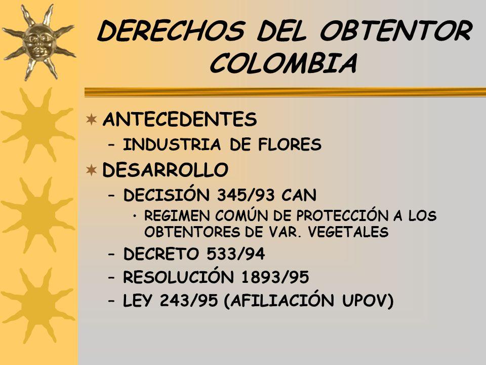 DERECHOS DEL OBTENTOR COLOMBIA ANTECEDENTES –INDUSTRIA DE FLORES DESARROLLO –DECISIÓN 345/93 CAN REGIMEN COMÚN DE PROTECCIÓN A LOS OBTENTORES DE VAR.