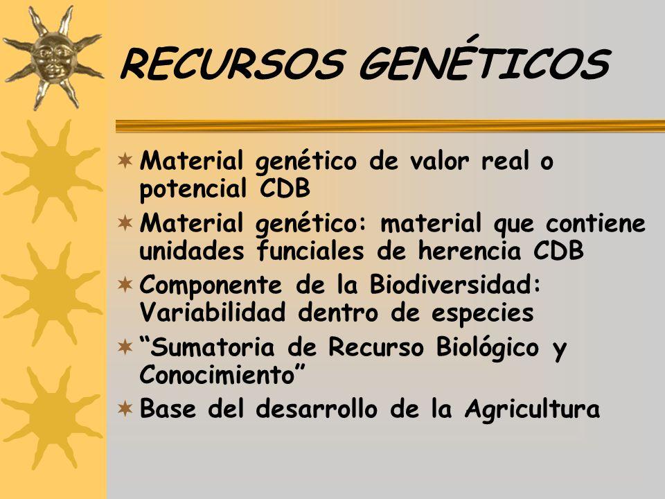 RECURSOS GENÉTICOS Material genético de valor real o potencial CDB Material genético: material que contiene unidades funciales de herencia CDB Compone