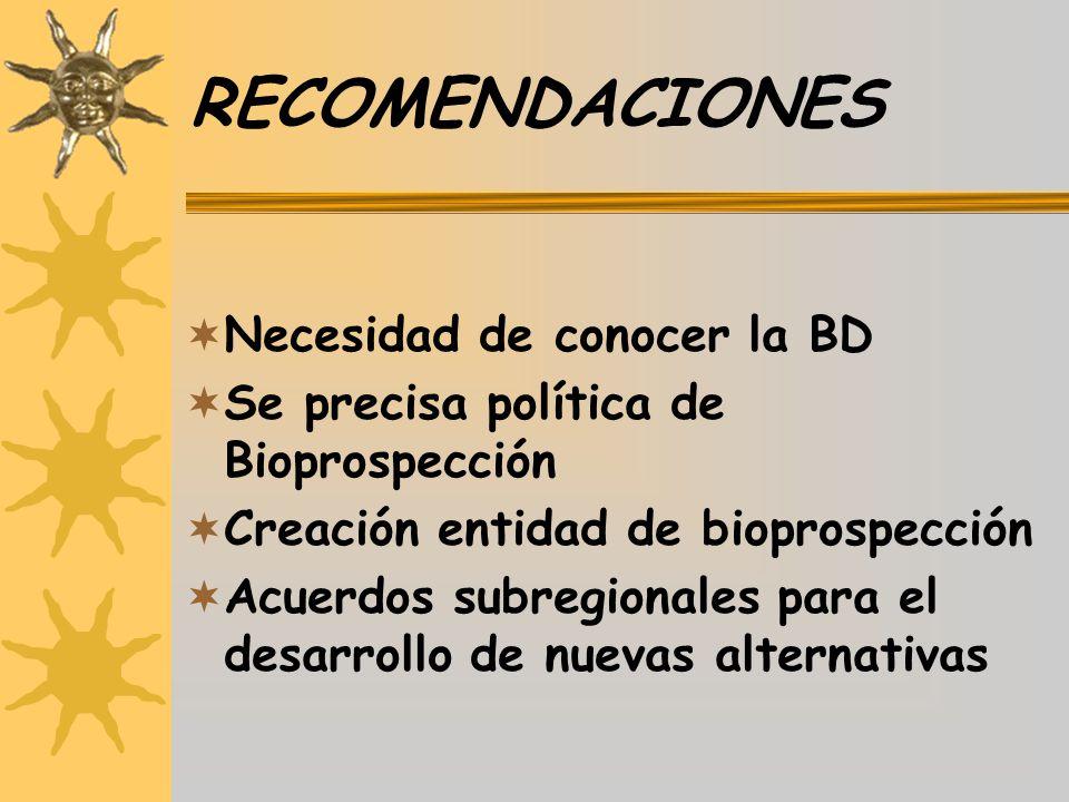 RECOMENDACIONES Necesidad de conocer la BD Se precisa política de Bioprospección Creación entidad de bioprospección Acuerdos subregionales para el des