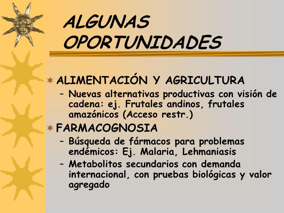 ALGUNAS OPORTUNIDADES ALIMENTACIÓN Y AGRICULTURA –Nuevas alternativas productivas con visión de cadena: ej. Frutales andinos, frutales amazónicos (Acc
