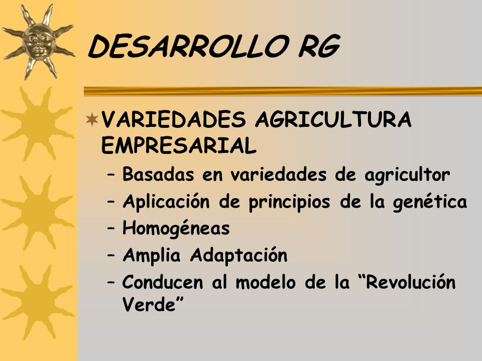 DESARROLLO RG VARIEDADES AGRICULTURA EMPRESARIAL –Basadas en variedades de agricultor –Aplicación de principios de la genética –Homogéneas –Amplia Ada