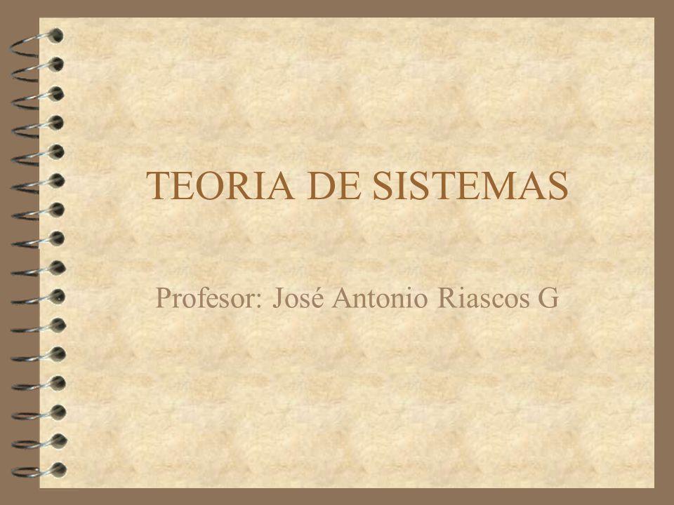 TEORIA DE SISTEMAS Profesor: José Antonio Riascos G