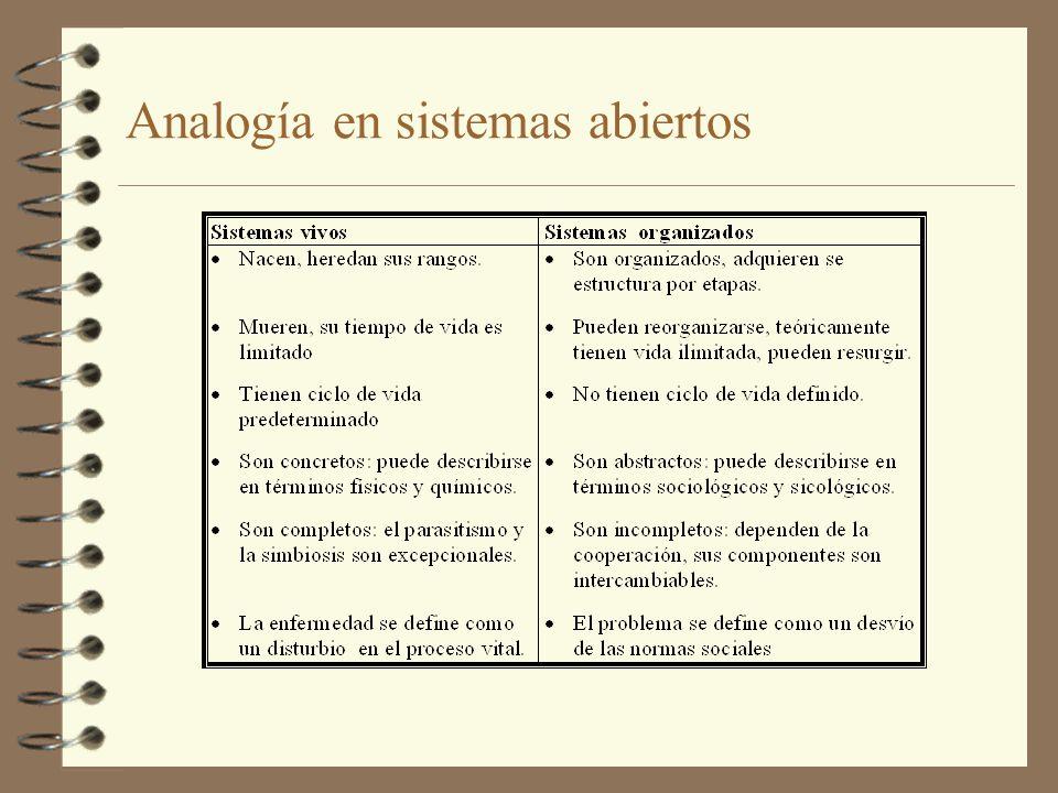 Analogía en sistemas abiertos