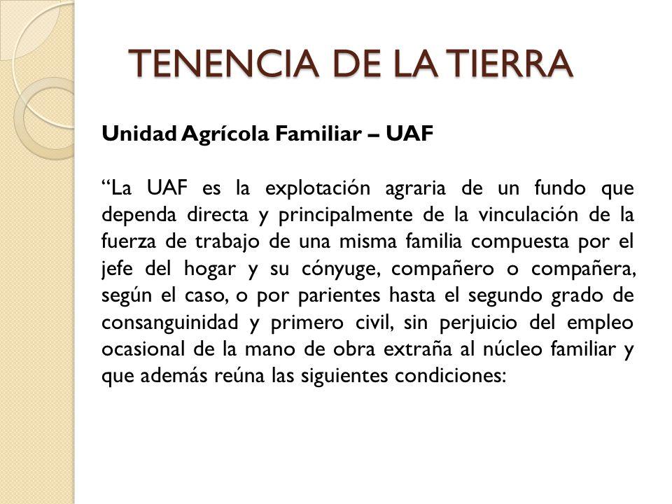 TENENCIA DE LA TIERRA Unidad Agrícola Familiar – UAF La UAF es la explotación agraria de un fundo que dependa directa y principalmente de la vinculaci