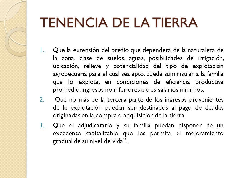 TENENCIA DE LA TIERRA 1.Que la extensión del predio que dependerá de la naturaleza de la zona, clase de suelos, aguas, posibilidades de irrigación, ub