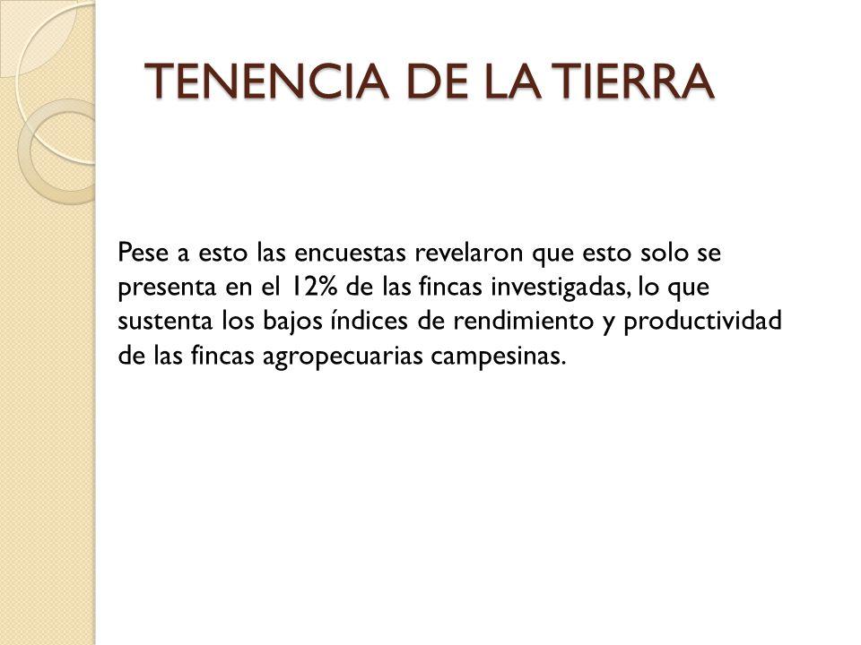 TENENCIA DE LA TIERRA Pese a esto las encuestas revelaron que esto solo se presenta en el 12% de las fincas investigadas, lo que sustenta los bajos ín