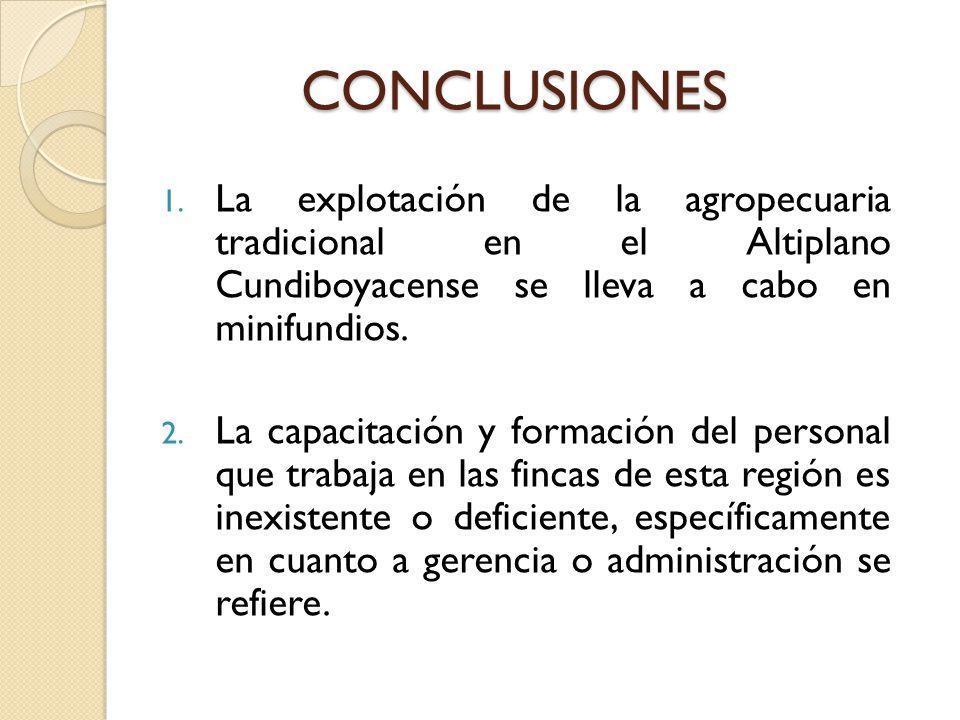 CONCLUSIONES 1. La explotación de la agropecuaria tradicional en el Altiplano Cundiboyacense se lleva a cabo en minifundios. 2. La capacitación y form