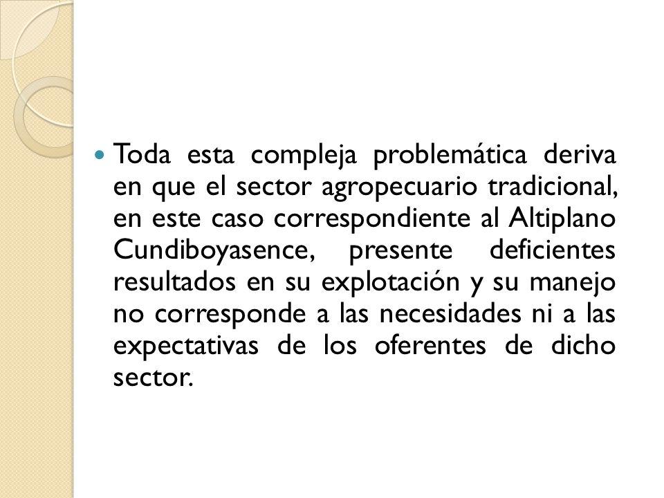 Toda esta compleja problemática deriva en que el sector agropecuario tradicional, en este caso correspondiente al Altiplano Cundiboyasence, presente d