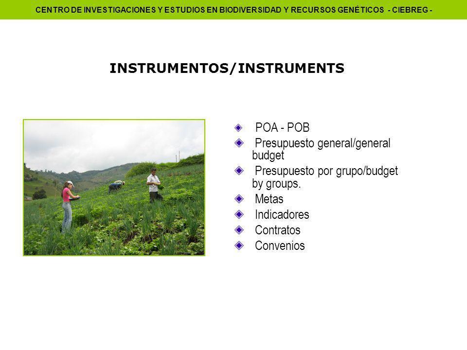 INSTRUMENTOS/INSTRUMENTS POA - POB Presupuesto general/general budget Presupuesto por grupo/budget by groups.