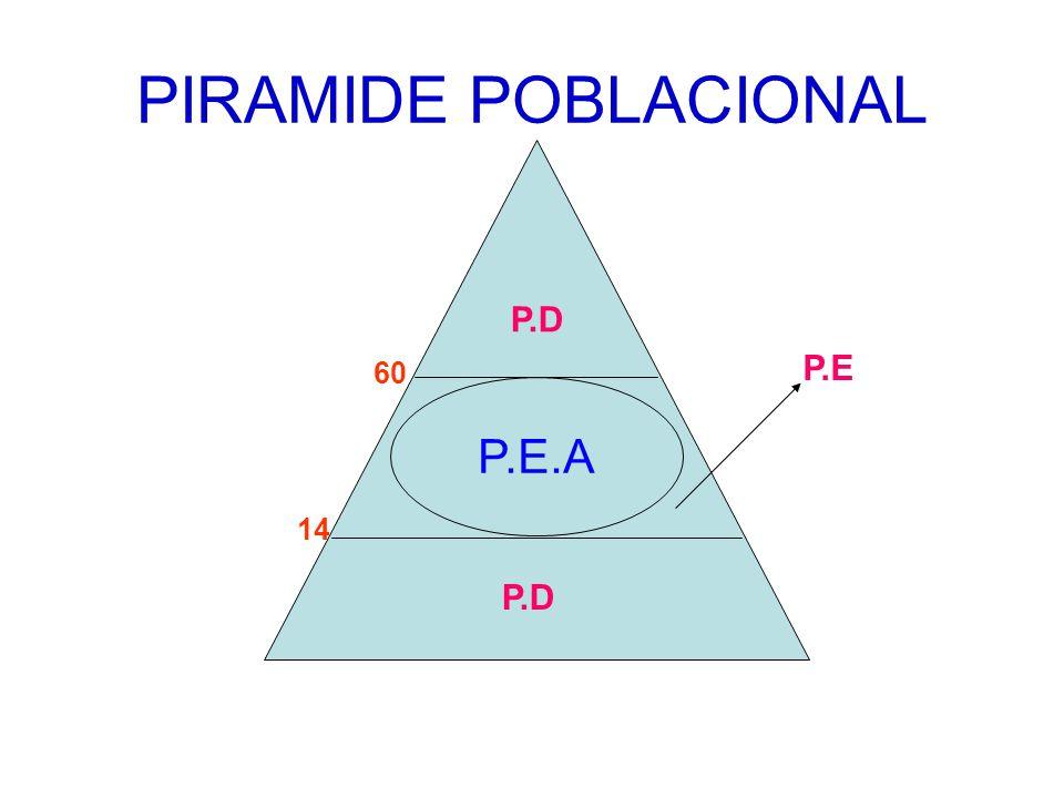 PIRAMIDE POBLACIONAL 60 14 P.E.A P.E P.D