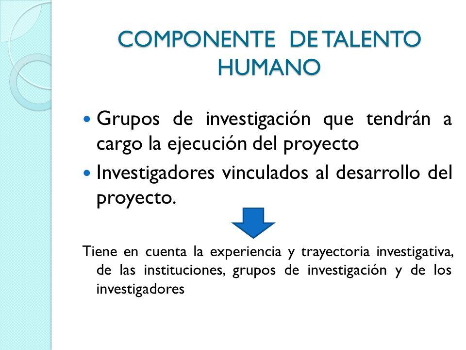 COMPONENTE DE TALENTO HUMANO Grupos de investigación que tendrán a cargo la ejecución del proyecto Investigadores vinculados al desarrollo del proyect