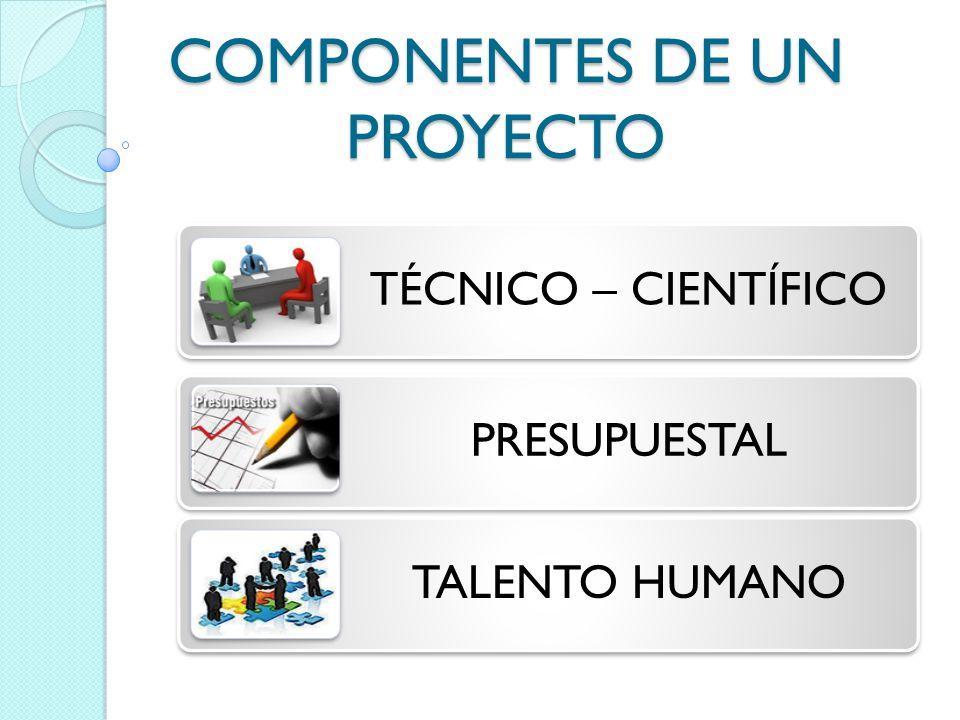 COMPONENTES DE UN PROYECTO TÉCNICO – CIENTÍFICO PRESUPUESTAL TALENTO HUMANO
