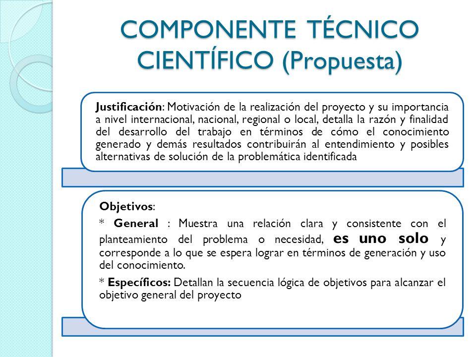 COMPONENTE TÉCNICO CIENTÍFICO (Propuesta) Justificación: Motivación de la realización del proyecto y su importancia a nivel internacional, nacional, r