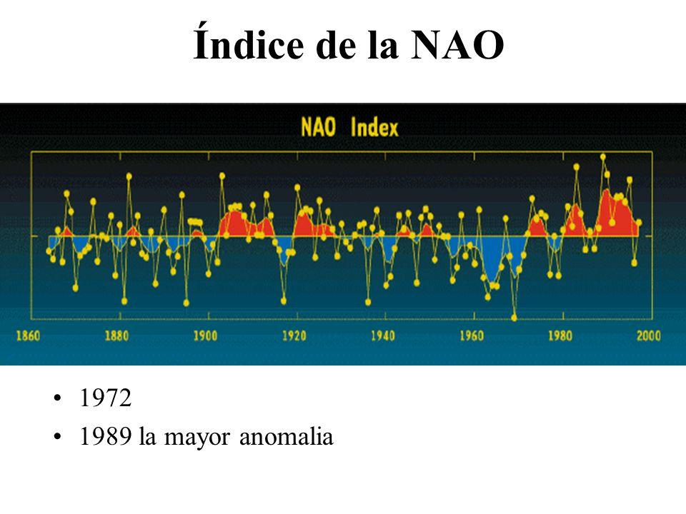 Impactos de la NAO Aumento de los vientos subpolares del oeste desde la superficie a la estratosfera más baja (Thompson et el al.