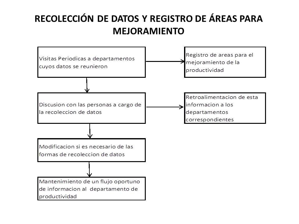 RECOLECCIÓN DE DATOS Y REGISTRO DE ÁREAS PARA MEJORAMIENTO