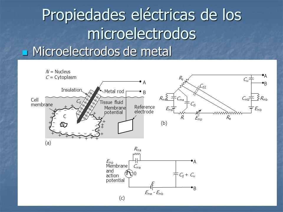 Propiedades eléctricas de los microelectrodos Microelectrodos de metal Microelectrodos de metal Metal rod Tissue fluid Membrane potential N C B (a) N = Nucleus C = Cytoplasm A Reference electrode Insulation CdCd Cell membrane + + + + + + + + + + + + + + + + + + + + + + B (b) A R mb R ma E mb E ma E mp RiRi ReRe C mb C ma C di C d2 RsRs CwCw E mp Membrane and action potential C ma R ma C d + C w E ma - E mb E 0 A (c) B