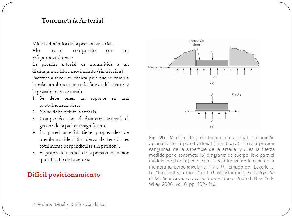 Fig. 25 Modelo ideal de tonometría arterial, (a) porción aplanada de la pared arterial (membrana). P es la presión sanguínea de la superficie de la ar