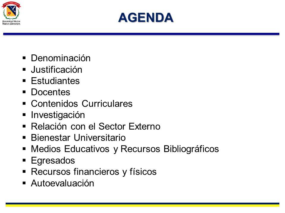 RELACION CON EL SECTOR EXTERNO Ampliación de la cobertura y proyección social Internacionalización (Movilización estudiantes, alianzas otros centros investigación).