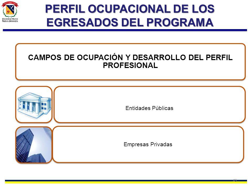 45 PERFIL OCUPACIONAL DE LOS EGRESADOS DEL PROGRAMA CAMPOS DE OCUPACIÓN Y DESARROLLO DEL PERFIL PROFESIONAL Entidades Públicas Empresas Privadas