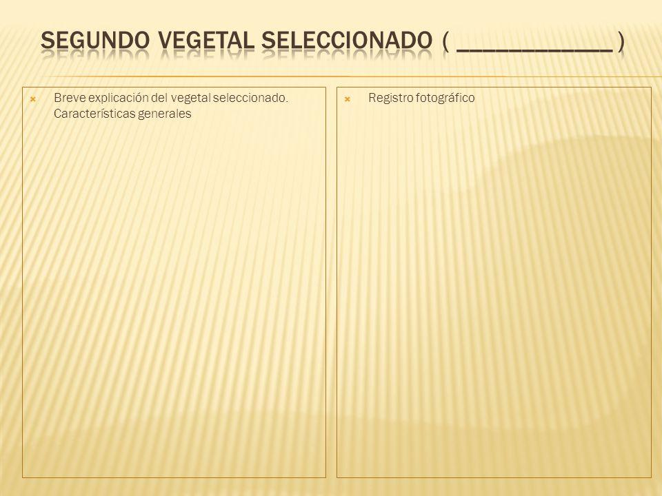 Breve explicación del vegetal seleccionado. Características generales Registro fotográfico
