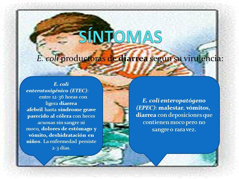 E. coli productoras de diarrea según su virulencia: E. coli enterotoxigénico (ETEC): entre 12-36 horas con ligera diarrea afebril hasta síndrome grave