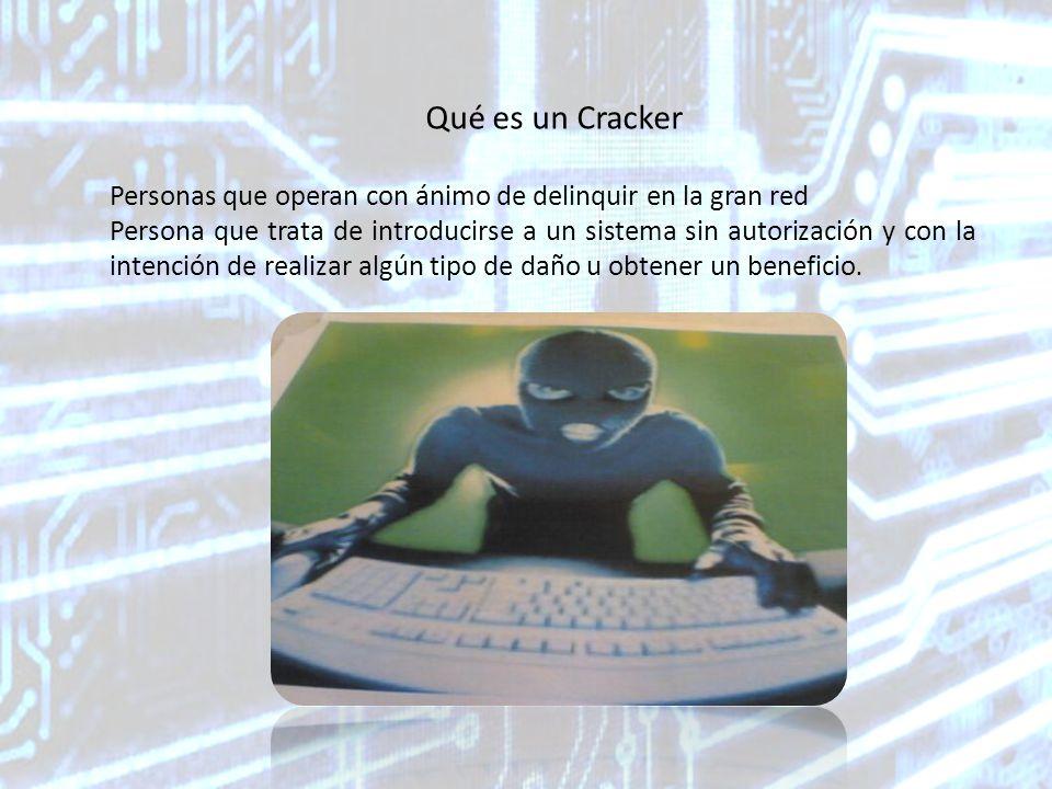 Bibliografía http://es.wikipedia.org/wiki/Hacker http://es.wikipedia.org/wiki/Cracker http://www.seguridadpc.net/hackers.htm http://es.wikipedia.org/wiki/Lamer_%28inform%C3%A1tica%29 http://www.monografias.com/trabajos16/seguridad-informatica/seguridad- informatica.shtml http://es.wikipedia.org/wiki/Virus_inform%C3%A1tico http://www.youtube.com/watch?v=z1a9acLkx40http://www.youtube.com/watch?v=z1a9acLkx40 (video) http://www.youtube.com/watch?v=Y98OyB6bulghttp://www.youtube.com/watch?v=Y98OyB6bulg (video)