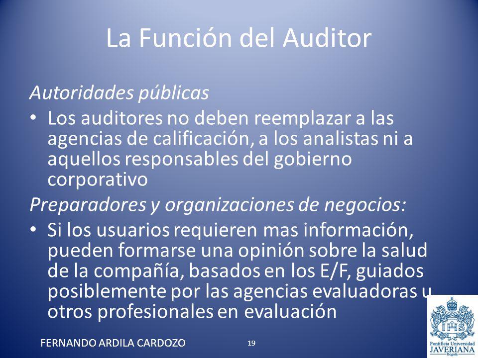 La Función del Auditor Autoridades públicas Los auditores no deben reemplazar a las agencias de calificación, a los analistas ni a aquellos responsabl