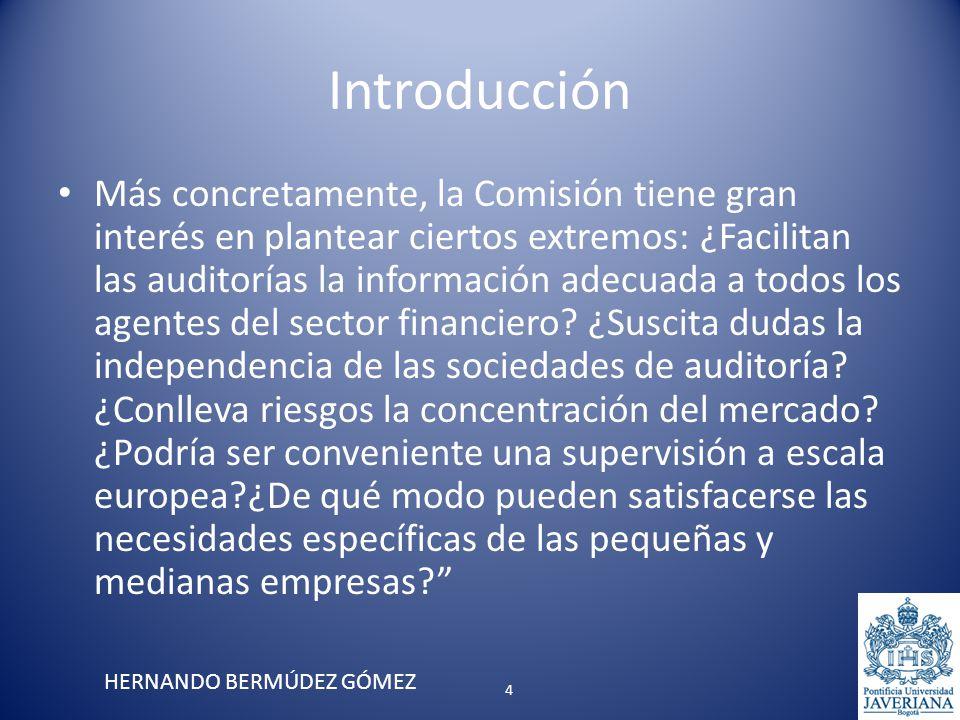Introducción Más concretamente, la Comisión tiene gran interés en plantear ciertos extremos: ¿Facilitan las auditorías la información adecuada a todos