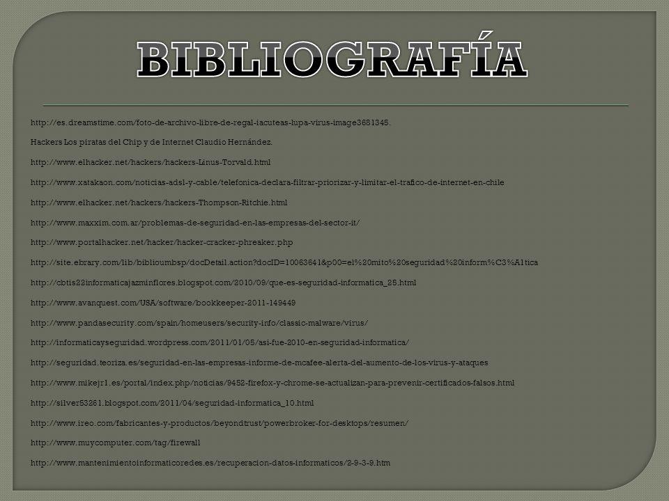 http://es.dreamstime.com/foto-de-archivo-libre-de-regal-iacuteas-lupa-virus-image3681345. Hackers Los piratas del Chip y de Internet Claudio Hernández