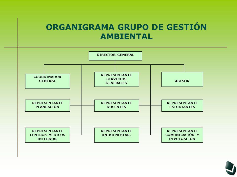 ORGANIGRAMA GRUPO DE GESTIÓN AMBIENTAL ASESOR DIRECTOR GENERAL COORDINADOR GENERAL REPRESENTANTE SERVICIOS GENERALES REPRESENTANTE PLANEACIÓN REPRESEN
