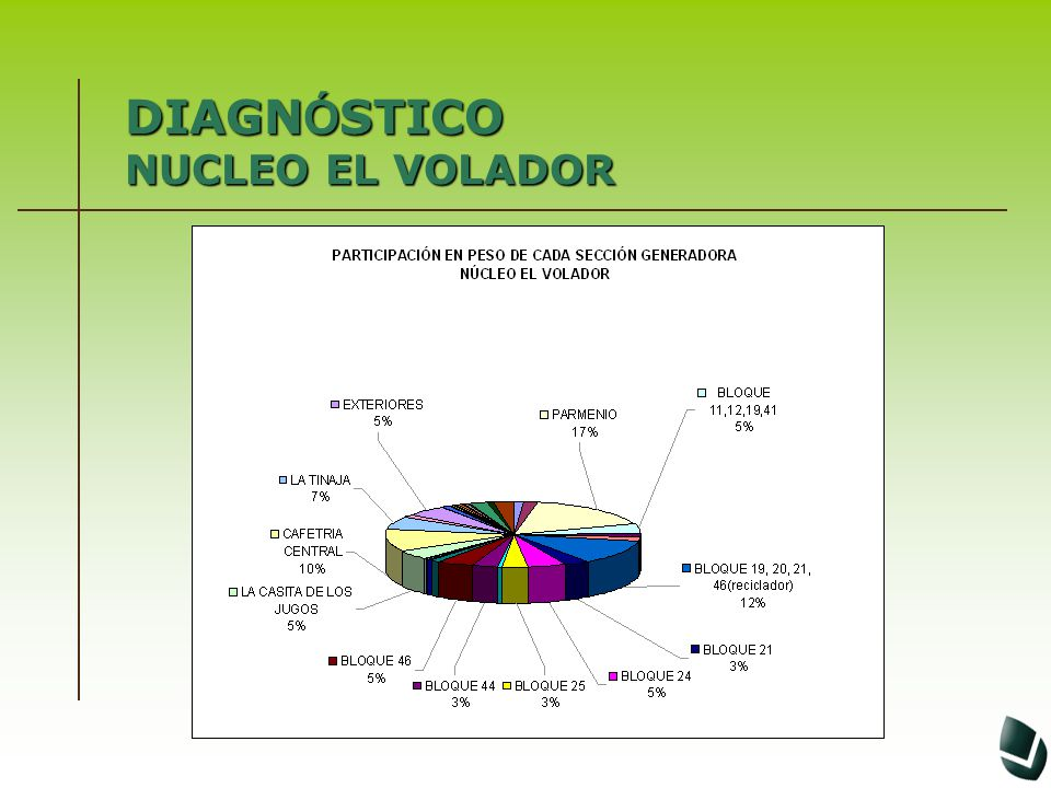 DIAGN Ó STICO NUCLEO EL VOLADOR