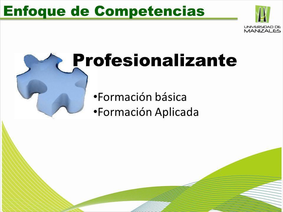 Enfoque de Competencias Profesionalizante Formación básica Formación Aplicada