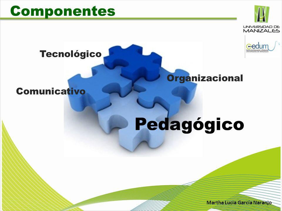 Martha Lucia García Naranjo Componente Pedagógico Comité de currículo Coordinador Académico Líder pedagógico Experiencias en virtualidad Maestria en Desarrollo sostenible y medio Ambiente Diplomado en AVA