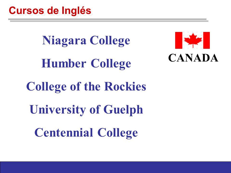 Cursos de Inglés St.Norbert College Green River Coll.