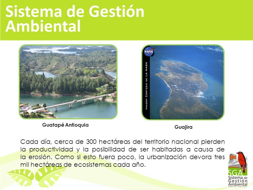 Cada día, cerca de 300 hectáreas del territorio nacional pierden la productividad y la posibilidad de ser habitadas a causa de la erosión.