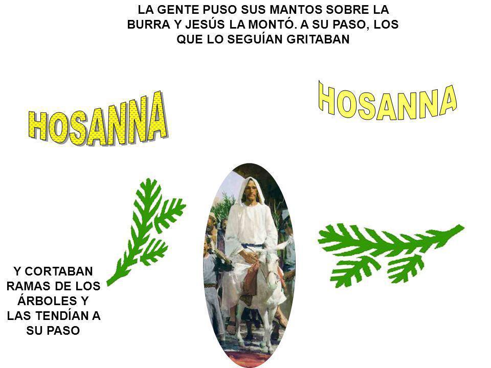 LA GENTE PUSO SUS MANTOS SOBRE LA BURRA Y JESÚS LA MONTÓ.