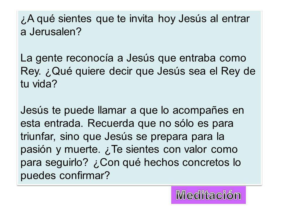 ¿A qué sientes que te invita hoy Jesús al entrar a Jerusalen.