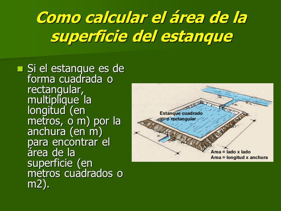 Como calcular el área de la superficie del estanque Si el estanque es de forma cuadrada o rectangular, multiplique la longitud (en metros, o m) por la anchura (en m) para encontrar el área de la superficie (en metros cuadrados o m2).