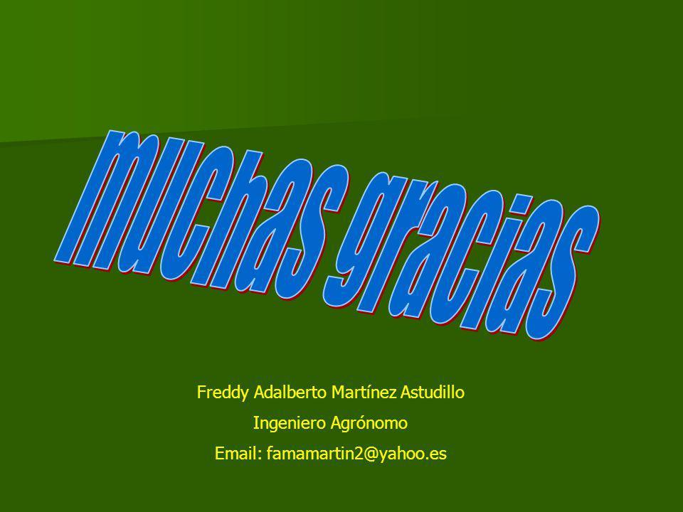 Freddy Adalberto Martínez Astudillo Ingeniero Agrónomo Email: famamartin2@yahoo.es