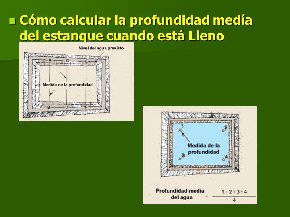 Cómo calcular la profundidad medía del estanque cuando está Lleno Cómo calcular la profundidad medía del estanque cuando está Lleno