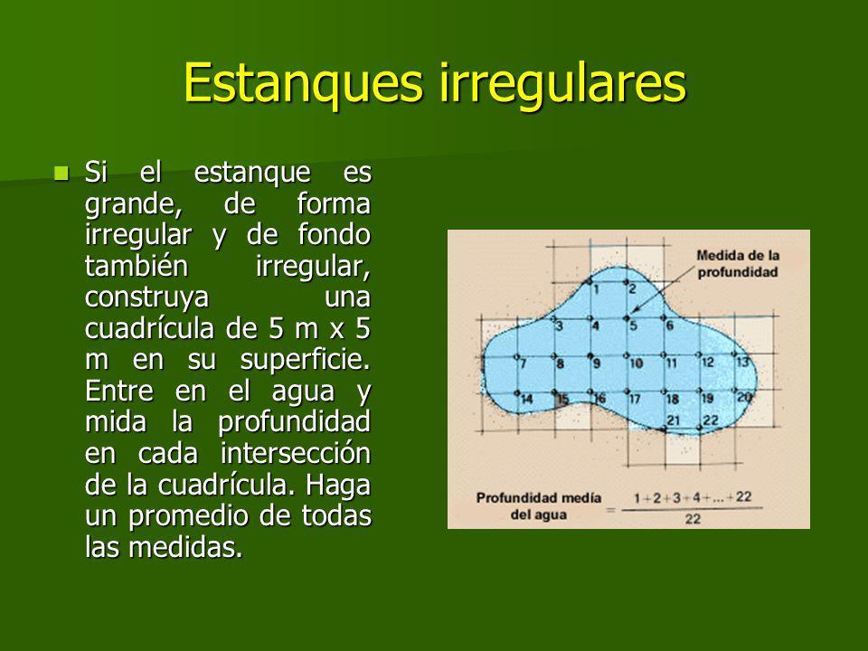 Estanques irregulares Si el estanque es grande, de forma irregular y de fondo también irregular, construya una cuadrícula de 5 m x 5 m en su superficie.