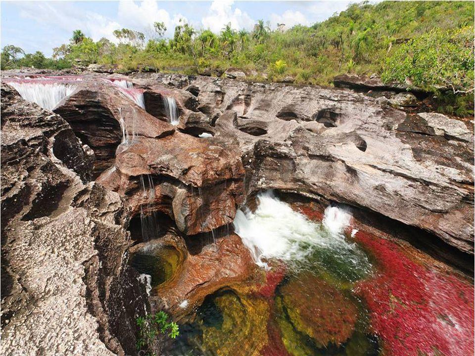 Las rocas sobre las que discurre el río, generan pequeñas pozas circulares denominadas marmitas de gigante, que han sido provocadas por el impacto de